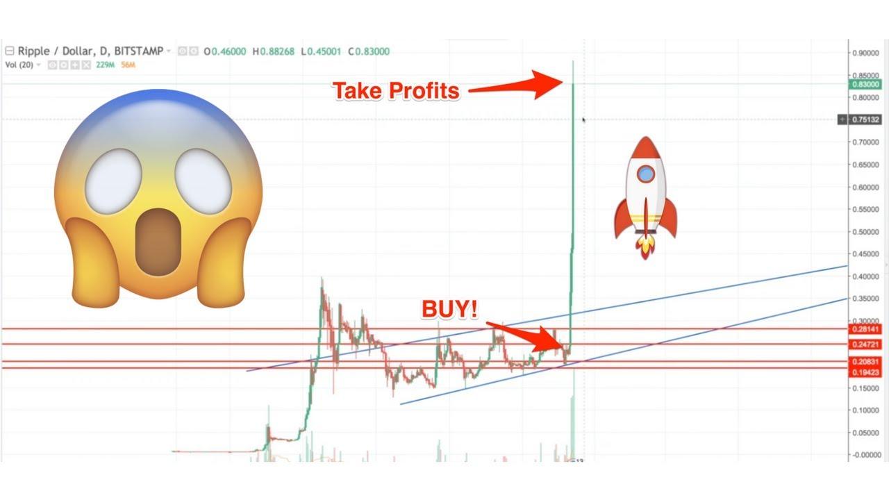 investicins kriptovaliut mons