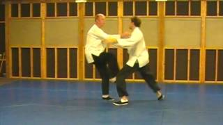Cheng Hsin Martial Arts Training Exercise, Misty Body Boxing (The Art Of Effortless Power)