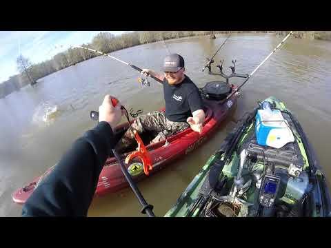 Jesse O'Neal And MrFaile At Sparkleberry Swamp. Massive Kayak Catfish