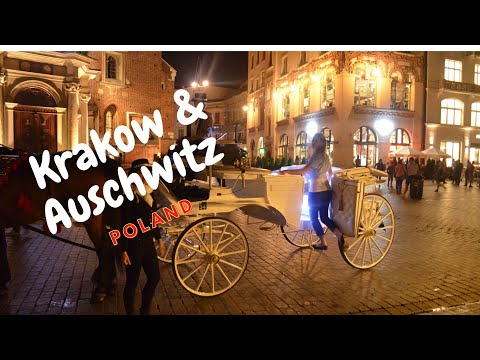Travel Krakow Poland | Auschwitz & Birkenau Concentration Camps