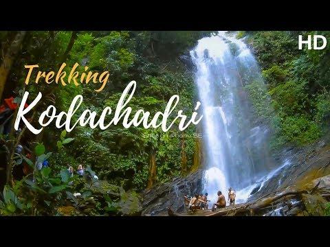 How to trek Kodachadri vlog | full trek video | Hidlumane Falls| Monsoon| Karnataka | Shot on iPhone