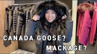 Canada goose? Mackage? 겨울 명품 자…