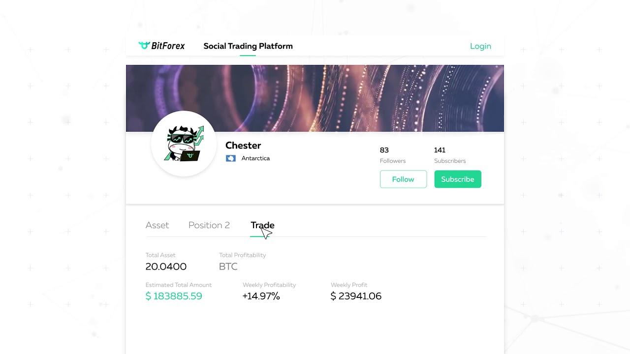 BitForex Social Trading 5