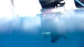 Propeller Underwater Speedboat