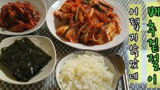 배추겉절이~흰 쌀밥에 배추 겉절이 올려서 먹으면~~~~