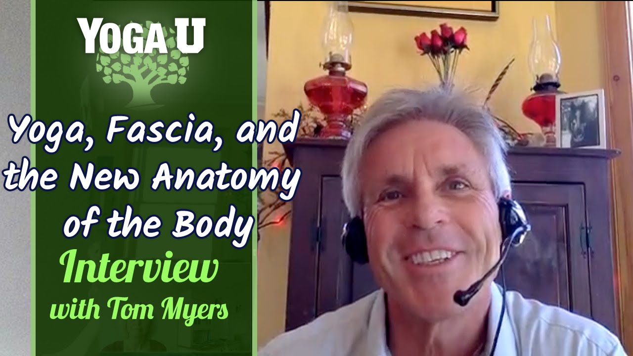 tom myers anatomy trains pdf