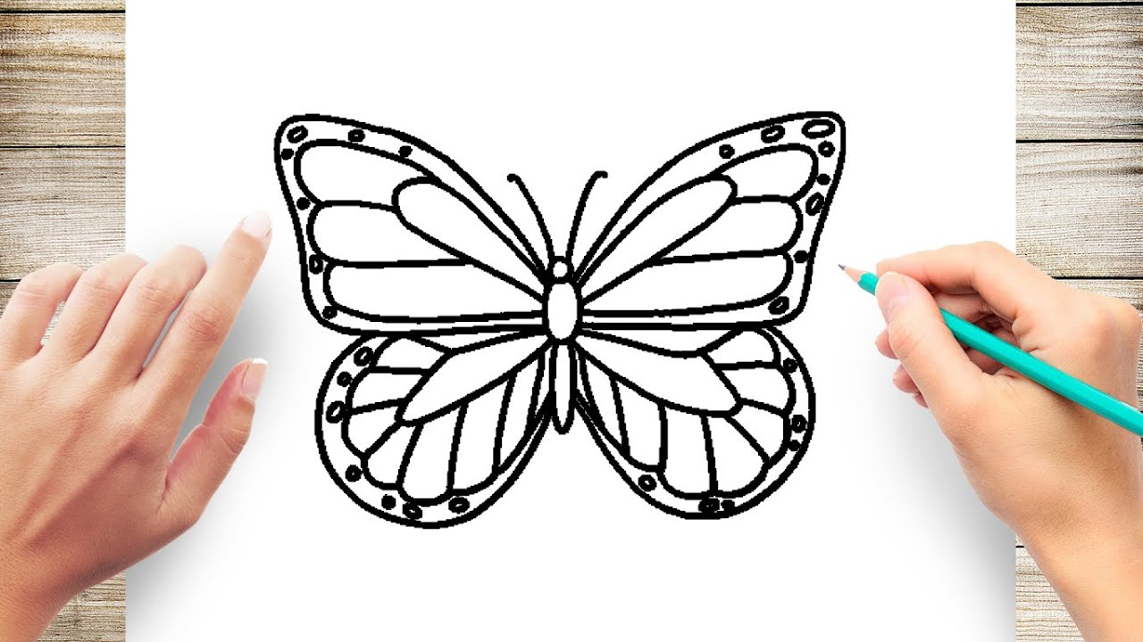 How To Draw Butterfly Easy Youtube