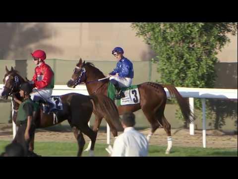 Races - Abu Dhabi (13 Nov 2016)