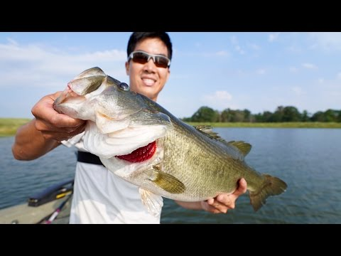 EPIC BASS FISHING TOURNAMENT!!! 1Rod & Jon B. vs. LunkersTV & Andrew Flair