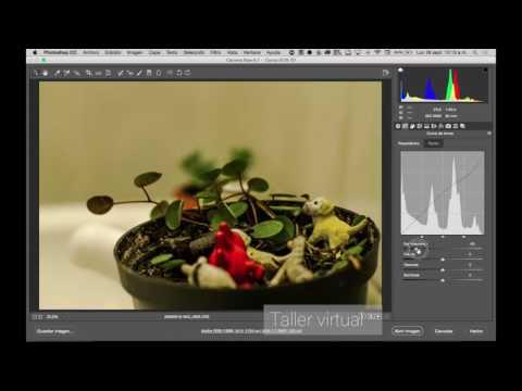 Revelado de fotografías RAW en Photoshop - Taller virtual from YouTube · Duration:  26 minutes 46 seconds