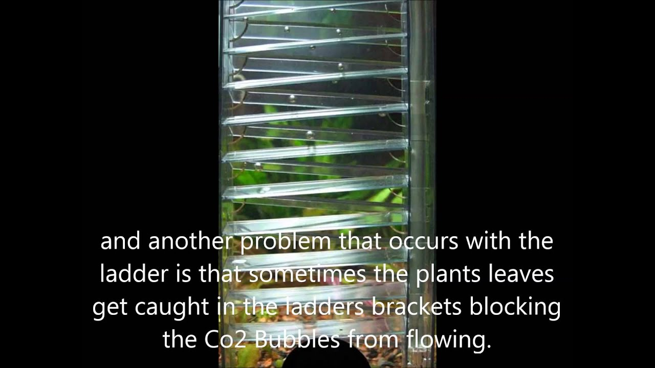 Best Co2 Diffusers Reviewed + Explained - Top 6 Diffusers for Planted Tank  / Aquarium Co2 Systems