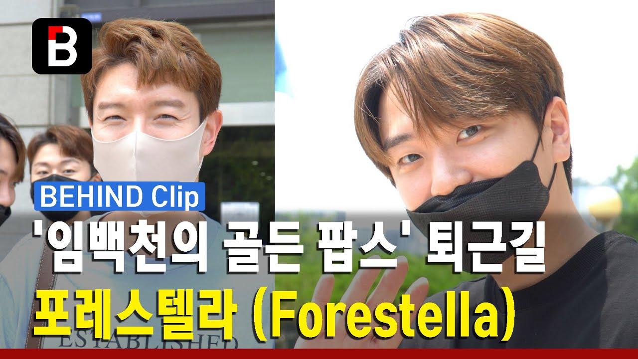 포레스텔라 (Forestella), '임백천의 골든 팝스' 퇴근길 - '고우림 ...