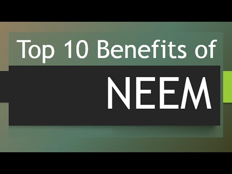 Top 10 Health Benefits of Neem - Amazing Benefits of Neem Tree