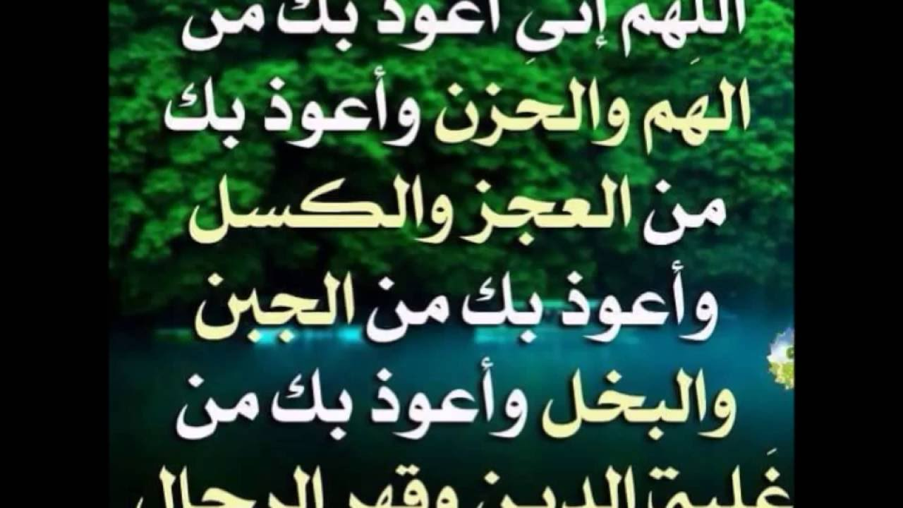 شرح الدعاء اللهم اني اعوذ بك من الهم و الحزن الشيخ حسين