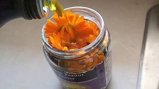 Gambar cover Make Your Own Calendula Oil Infusion