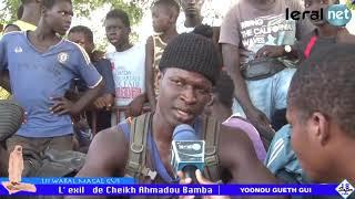 Magal Touba 2018: Découvrez l'imposant cheptel de Cheikh Béthio Thioune à Dianatou Mahwa