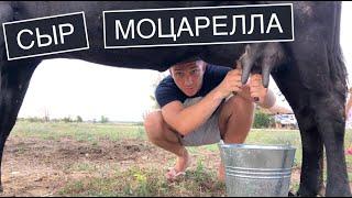 Готовим Сыр моцарелла в Крыму из молока деревенских коров Повторяем рецепт Alina FooDee