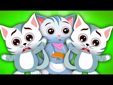 tre piccoli gattini  canzone di gatto  poesia per bambini  Three Little Kittens  Nursery Rhymes