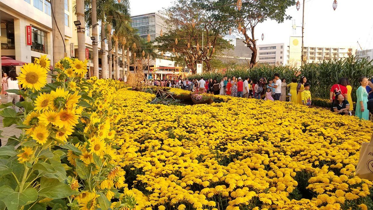 Toàn cảnh đường hoa Phú Mỹ Hưng có Vườn Hướng Dương siêu đẹp