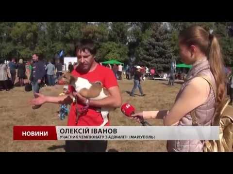 Cherkasy Open Agility - Телеканал 24