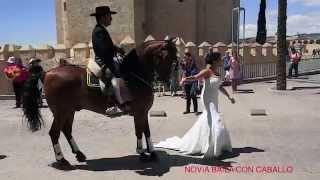Spanje Cordoba: Novia Baila con caballo. Bride dancing with horse.