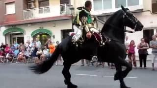 Великолепное шоу с испанскими лошадьми на празднике. Валенсия(Испания)