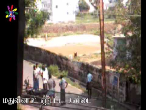 Drinkers Fight in Tiruchengode