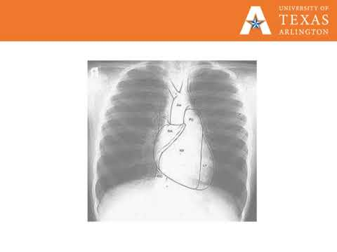 Module 1 Lecture 1   Introduction to Radiology