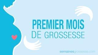 Premier mois de grossesse - Mois 1 de grossesse - La grossesse mois par mois