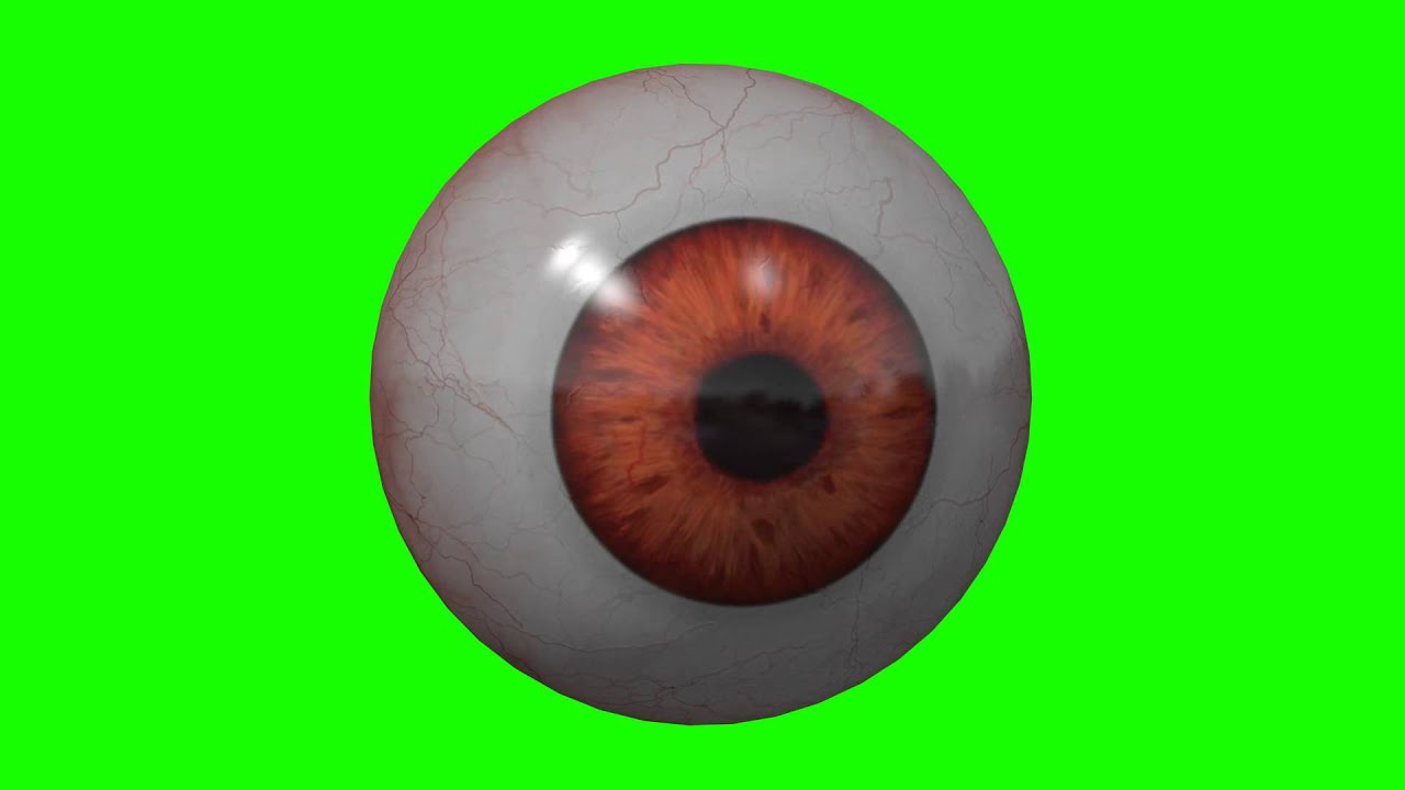 real human eye looking around in green screen