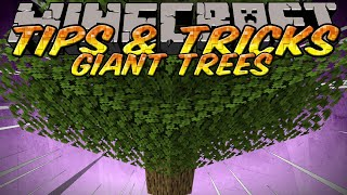 Minecraft Tips and Tricks - How to Grow a Big Tree - Never Get Small Trees Again