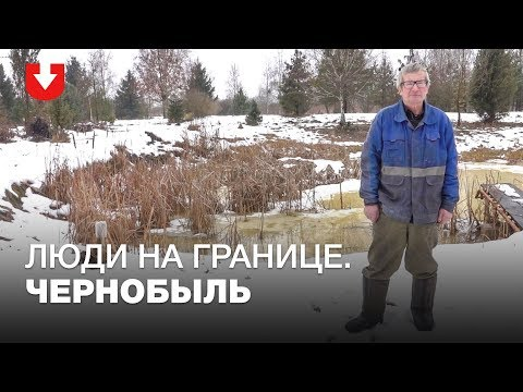 Чернобыль. Как там
