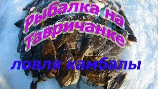 Ловля камбалы на Тавричанке рыбалка в Амурском заливе Приморский край