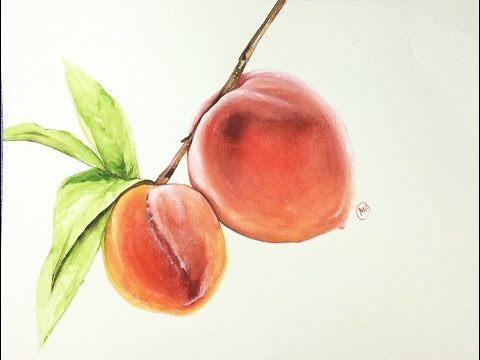 Watercolor Realistic Peaches Painting Demonstration