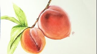 Gambar cover Watercolor Realistic Peaches Painting Demonstration