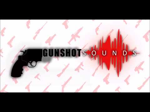 Guns  Shot for PC (2020) - Download For PC, Windows 7/8