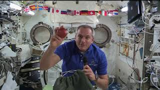 Expedition 58 / Canadian Space Agency -Spectrum 2019 Jan10 2019