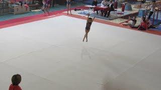 Разминка на соревнованиях по спортивной гимнастике