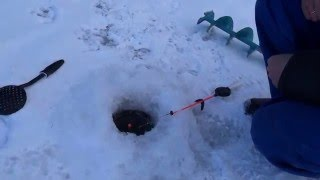 Ice fishing in Kaliningrad, Russia. A fisher explains his know-how