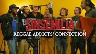 Reggae Addicts Connection - Sinsémilia Official Videoclip