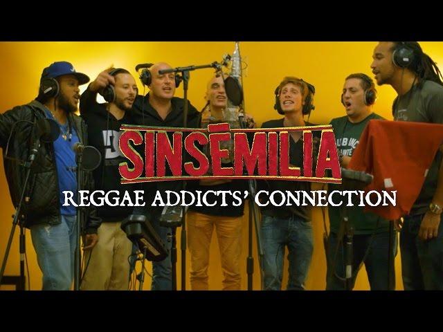 SINSEMILIA - Reggae Addicts Connection - ( Clip Officiel 📽️ )