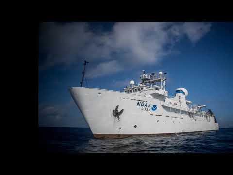 अब समुद्र की गहराइयों को समझने के लिए रोबोट का इस्तेमाल