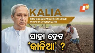 Will farmers in the State be able to avail the KALIA scheme