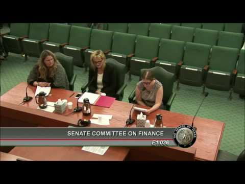 Kyla McKay: Testimony Before Senate Finance Committee Hearing on Article II - 1.31.17