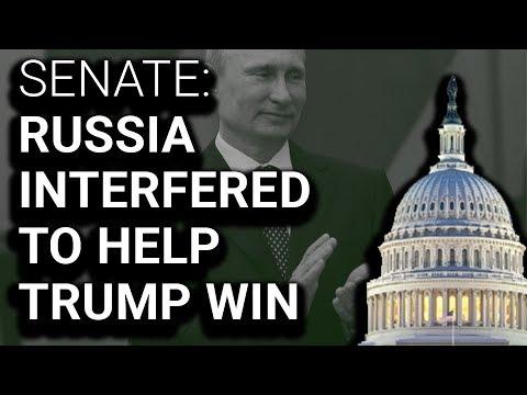 Senate Investigation Concludes Russia Interfered to Help Trump Win