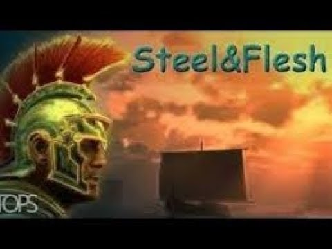 IceWolf5 plays Steel and flesh: Chinese campaign