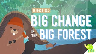 Big Changes In The Big Forest: Crash Course Kids #38.2