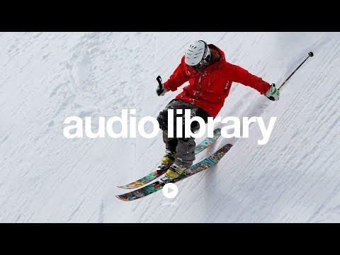 Echinoderm Regeneration - Jingle Punks (No Copyright Music)