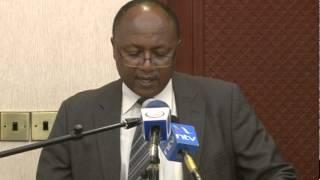 Kenya Cyber Security Report 2014