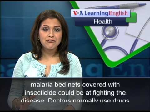 Anti-Malaria Bed Nets Can Fight Elephantiasis